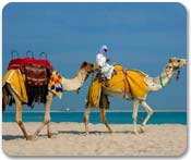 Dubai/Emirates Cruisetours
